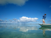 Flats fishing with an island guide in the Turks and Caicos Islands
