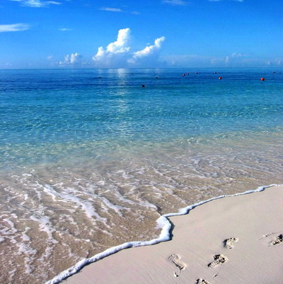 Bonefishing Turks And Caicos Islands Providenciales