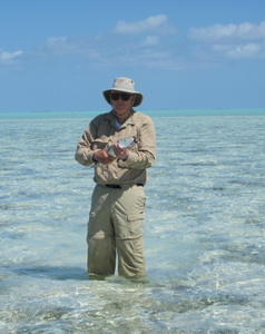 Bonefishing flats and bonefish in the Turks and Caicos Islands