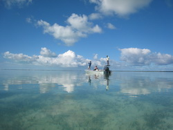 Bonefishing on the flats of the Turks and Caicos Islands
