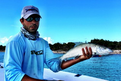 Bonefish on the bonefishing flats in the Turks and Caicos Islands