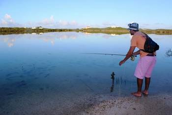 Flamingo Lake bonefishing close by villa accommodation at Harbour Club Villas and Marina